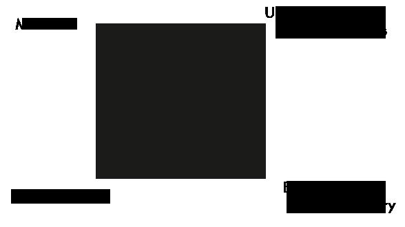 Logo radio schizo wordpress